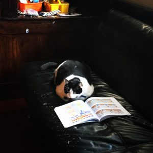 Bubba reading Garfield.